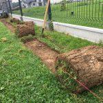 wycinarka do darni jak ukształtować teren usunięcie starej trawy przygotowanie terenu sadzenie drzew rolki trawy ogrody